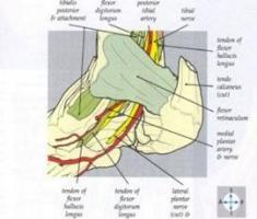 Opération du syndrome du canal tarsien à Annecy